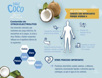 AGUA DE COCO x 1L DALE COCO